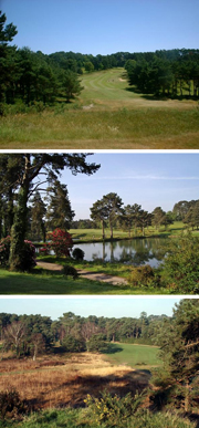 Hotels Near Isle Of Purbeck Golf Course