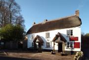 The Sandy Park Inn
