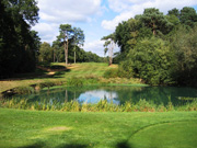 West Byfleet Golf Club