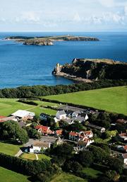 Celtic Haven