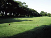 The Glamorganshire Golf Club