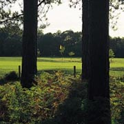 Moors Valley Golf Club